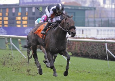 Humble and Hungry Wins Commonwealth Turf Stakes