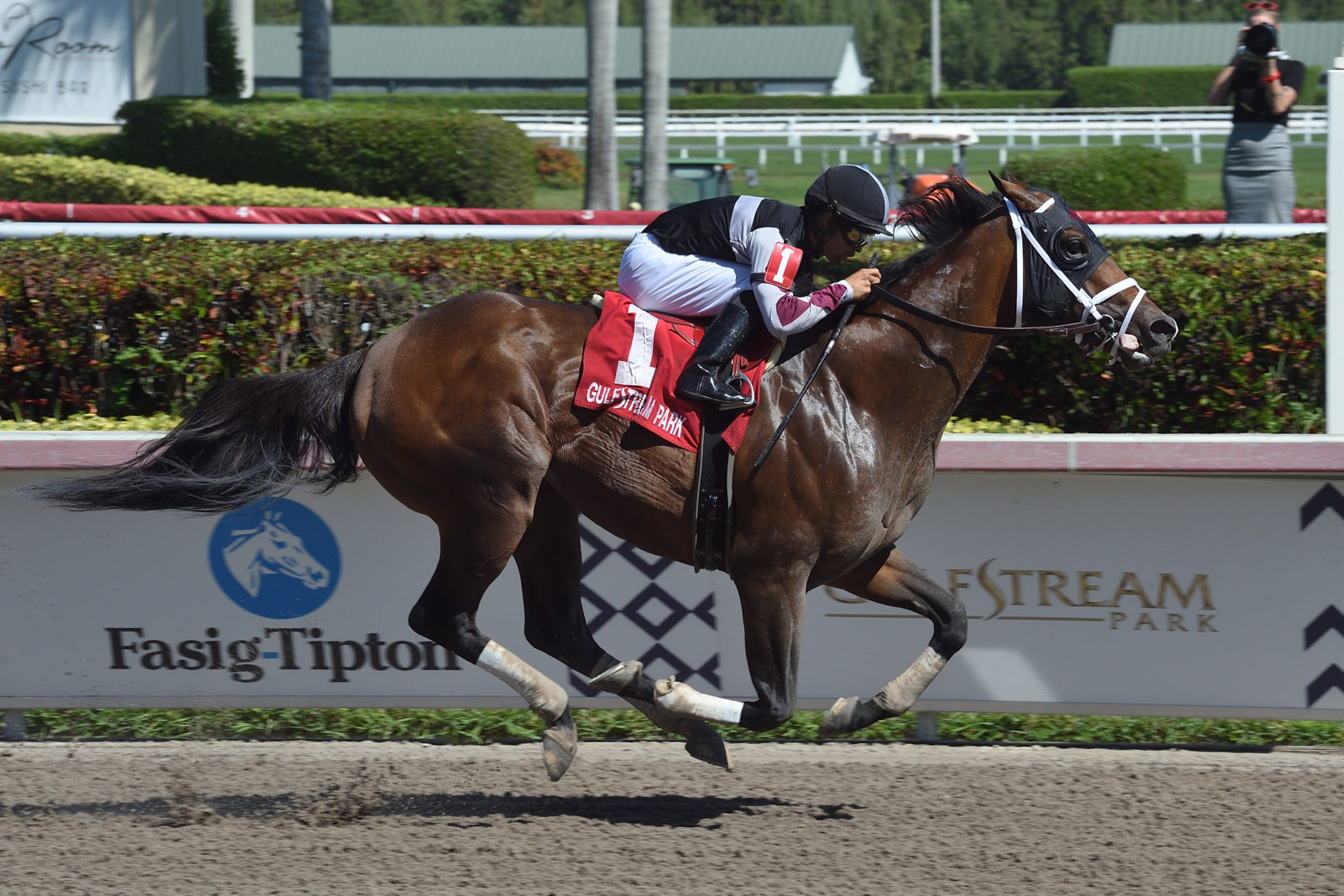 Weekend Recap: Recruiting Ready Wins G3 Gulfstream Park Sprint